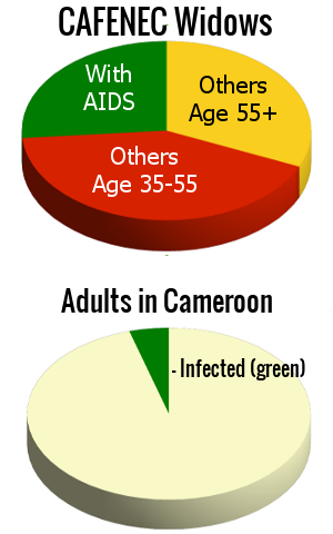 Pie charts showing AIDS infection rates and CAFENEC widow ages